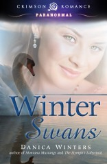 Winter Swans Cover